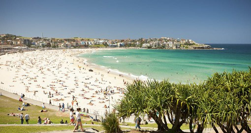 Explore Bondi Beach, just outside Sydney