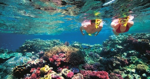 The Great Barrier Reef holds many exotic and breathtaking views