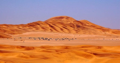 Visit the Namib Desert on your Namibia Vacation