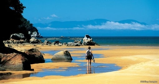Discover Onetahuti beach on your New Zealand Vacation