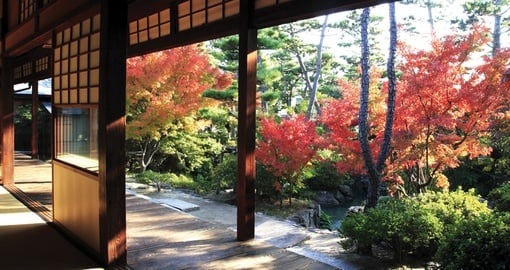 Japan Fall Colours