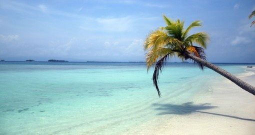 Let it all go on your trip to the San Blas Islands on your Panama Vacation