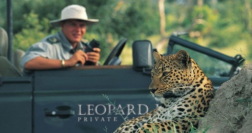 Experience a luxury safari while in South Africa