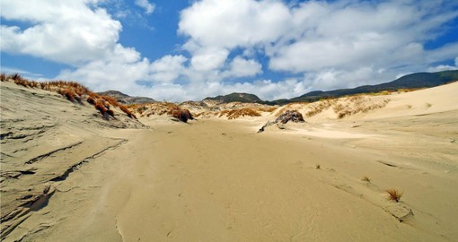 Stroll the Sand Dunes, Mason Bay on Stewart Island during your trip to New Zealand