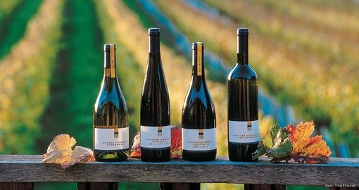 The Nelson area is famous for its New Zealand wines and should an included destination on all New Zealand tours.
