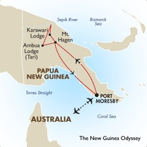 The New Guinea Odyssey