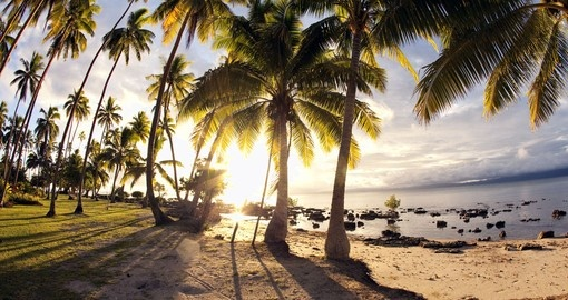 Experience tropical beach at dawn during your next Fiji vacations.