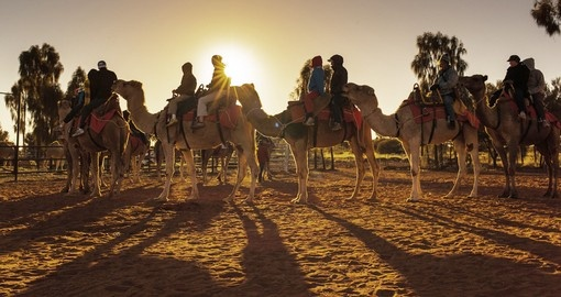 Join a group and trek to Ayers Rock in the morning by camel on your Australia Vacation