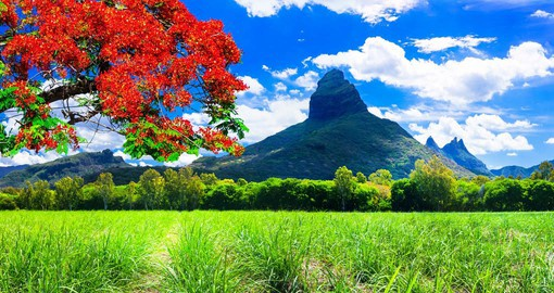 The central plateau of Mauritius offers beautiful mountain vistas