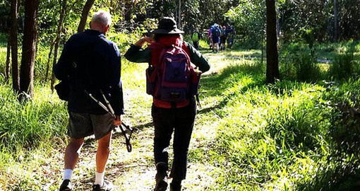 Enjoy a walk in the bush on your Australia tour