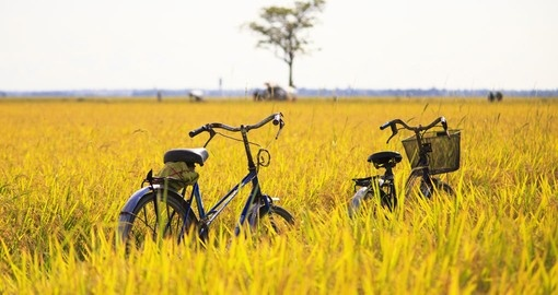 Explore by bike on your Thailand tour