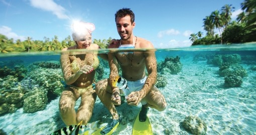 Explore Coral Gardens and enjoy its beautiful during your next Tahiti vacations.
