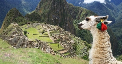 Explore the lost city of Machu Picchu on your trip to Peru