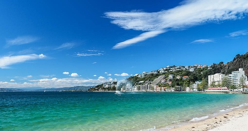 Explore Wellington on your trip to New Zealand