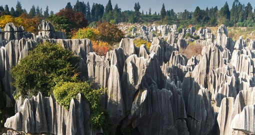 Experience Kuning Stone Forest on your trip to Chian