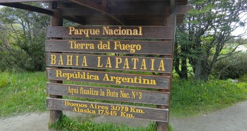 Discover Lapataia National Park on your next trip to Argentina.