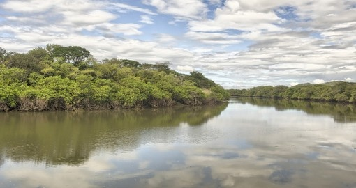 Cruise the Tempisque River on your Costa Rica Vacation