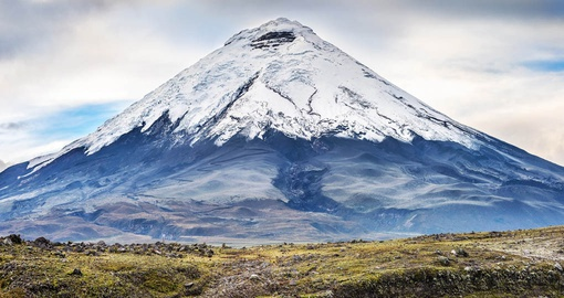 Discover Cotopaxi in the Andes Mountains during your next Ecuador tours.