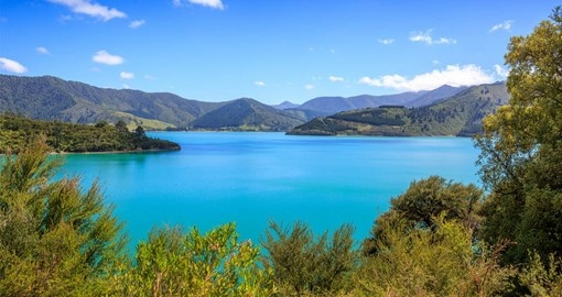 Visit spectacular Queen Charlotte Sound on you New Zealand Vacation