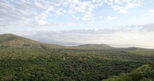 Great view of The National Park in Arba Minch
