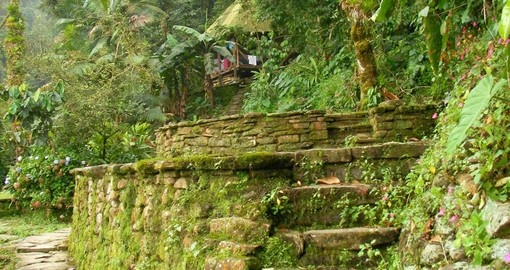 Experience the thrill of discovery as you come upon the Lost City on your trip to Colombia
