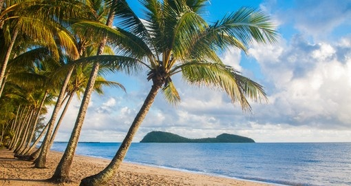 A beautiful tropical beach with palm trees