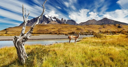 Hike beautiful Torres del Paine National Park on your Chile Vacation