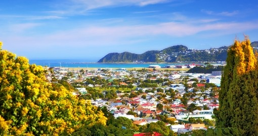 Explore Wellington and enjoy its beauty on your next New Zealand vacations.
