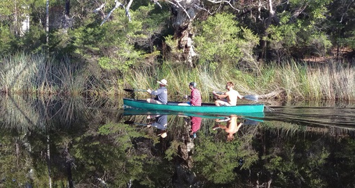 Experience Everglades Bar-B-Canoe tour on your next Australia vacations.