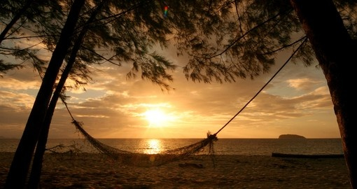 Hammock strung between two palms