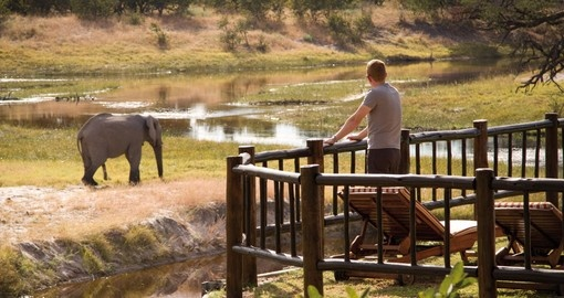 Enjoy an amazing view from your lodge on our Botswana tours
