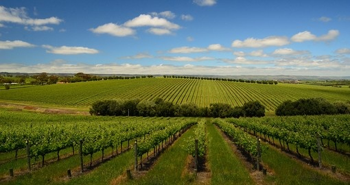 Enjoy beautiful view of clouds over McLaren Vale during your Trip to Australia and its wine region.