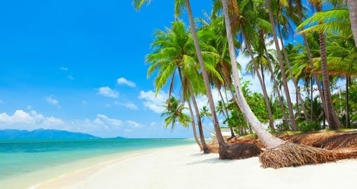 Koh Samui is Thailand's second largest island after Phuket and is a great inclusion for all Thailand tours.