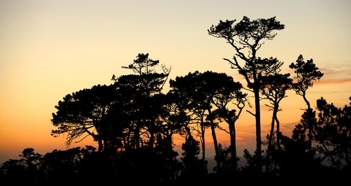 Sunset in Aberdare National Park - A great photo opportunity on your Kenya safari