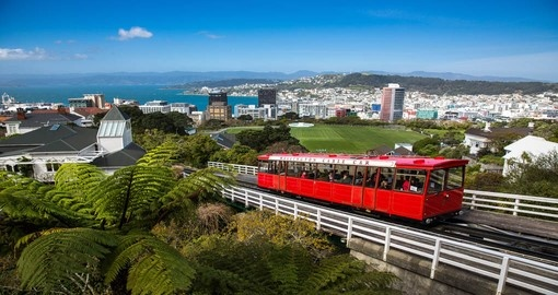 Enjoy the view of the Wellington Cable Car on your next New Zealand  tours.