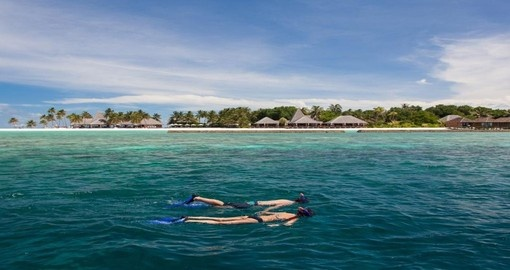 Snorkel off the beach of the Veligandu Island Resort during your Maldives vacation