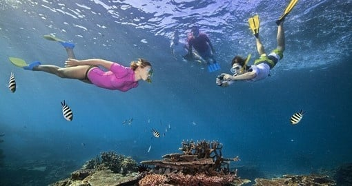 Great Barrier Reef, Queensland, Image courtesy of Tourism Australia