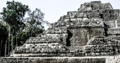 Tikal National Park, know for it's Mayan Ruins, are a must see during your Guatemala vacation