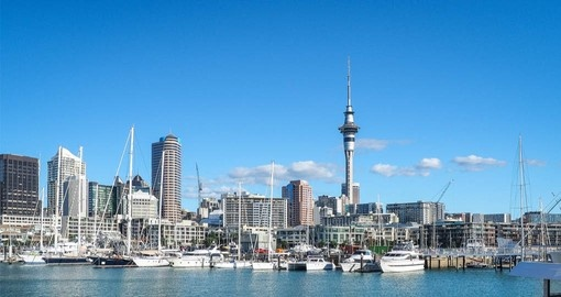 Include a cruise on beautiful Auckland Harbour as part of your New Zealand Vacation