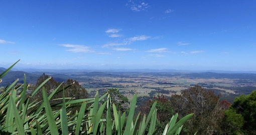 Your Australia Vacation includes a visit to Mt. Tamborine