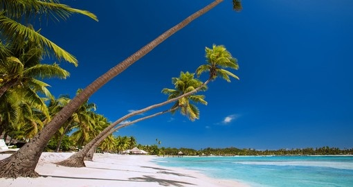 Take a walk or have a sunbathe on the white sandy beach during your next Fiji vacation.