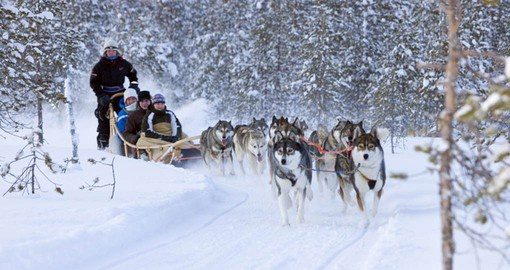 See the Huskies in action while visiting Finland