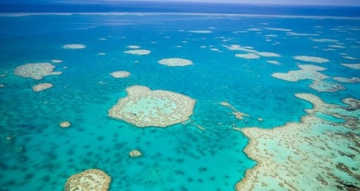 Explore Great Barrier Reef during your next Australia tours.
