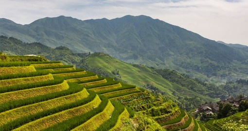 Visit the impressive Longsheng Rice Terraces on your China Vacation
