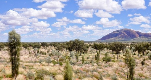 Explore Australian Desert during your next trip to Australia.