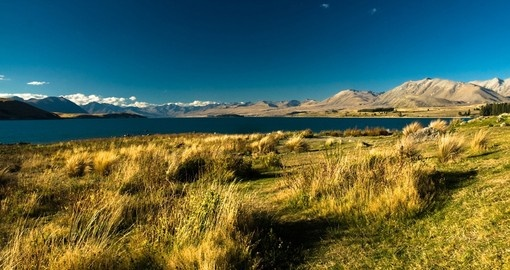 You will be amazed by the scenic view of Lake Tekapo on your next New Zealand vacations.
