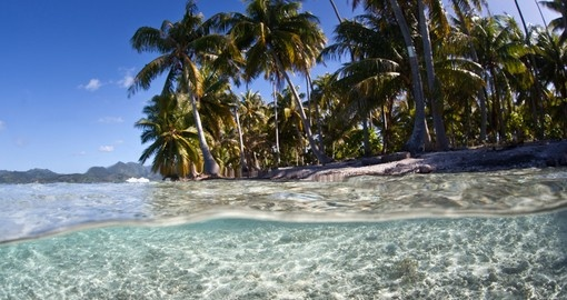 Walk on the amazing beaches and have a sunbathe under palms on your next Bora Bora tours.