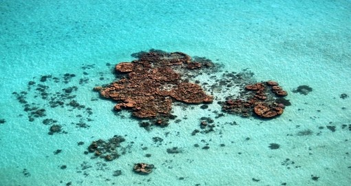 Aerial view of the Coral reef in Ningaloo, Australia