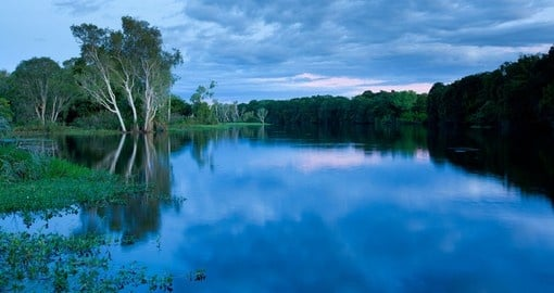 On one of your Trips to Australia visit the Mccreadies Billabong where you can appreciate the true beauty of nature