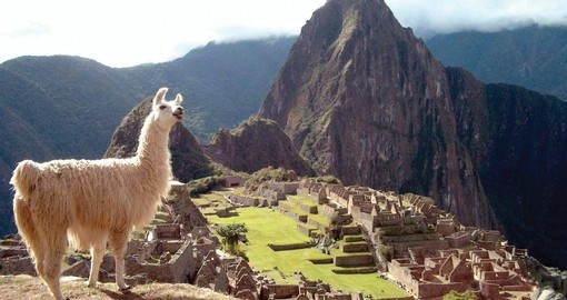 "Explore the ""Lost City"" of Machu Picchu"